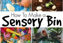 Kindergartne Sensory Bins / Sensory Bin ideas for kindergarteb