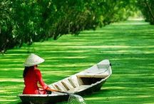 vietnamese images