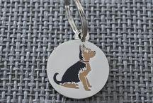 Terrific Yorkshire Terrier Things