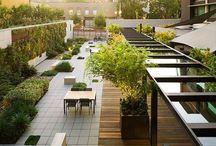 hotel landscape design