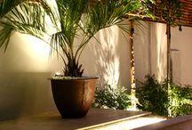 Little Venice / A Bali Award winning garden, sleek and minimalist with a degree of bling.