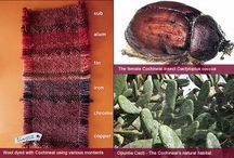 Types of Dye used in Rugs