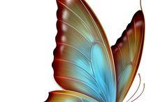 Malování Motýl