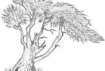 How to draw woods and e tree etc.