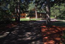 The Historic Pinecrest Lodge