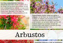 La Gran Guía del Jardín 2016 / ¡La primavera llega con todos sus colores y texturas! Descubre todos los pines que te ayudarán a cuidar ese espacio de tu casa que tanto quieres.