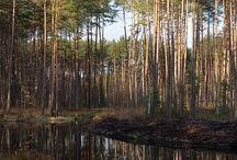 Janów Lubelski i prawie wiosna