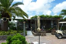 Florida Wineries Visited