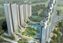 International Land Developers / Our major focus is on reviews and subject matter related to themes, like Builders in Delhi NCR and Residential Apartments in Gurgaon.