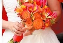 Pink and Orange / Love this colour combo. / by Valerie Thorpe