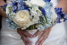 Blue Butterfly Wedding Theme(Hanna)