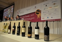Argentina Wine Awards 2012 / Created as a means to evaluate and award the quality and progress of the Argentine wine industry, the AWA has earned its place as the most important competition in the local calendar of events.