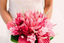Fiji flowers used at weddings