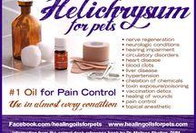 PET TIPS/HEALTH HELP/ETC