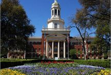 Baylor University / by Misty Carson
