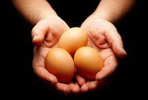 Nurture Egg Donors / Nurture Egg Donors