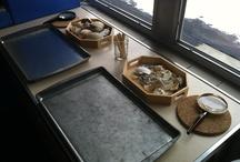 Montessori Science/Nature Materials