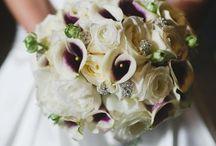 Auckland Wedding Week