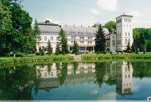 Jeleniów - Pałac