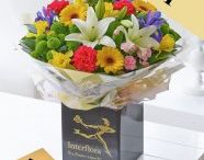 Spring 2016 / View our amazing range of flowers from our Spring range 2016