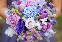 Color Scheme - Purple & Blue / Anything purple and blue! / by Kaitlin Forbes