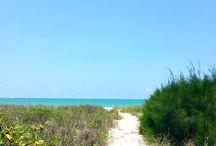 North Captiva Island Charter / Photos from a charter to North Captiva Island, Florida.