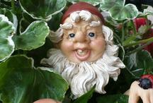 •♥✿♥• Gnomes •♥✿♥•