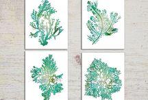 Nature Love: Seaweed #52weeksofnatureart / Inspiration board for of #ayearofnatureart | #52weeksofnatureart http://louisegale.com/a-year-of-nature-art/