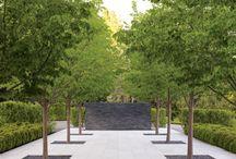 Courtyard Design/Small Gardens