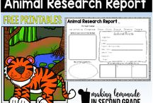 animal research poster