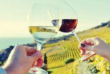 Virginia Wine Country / Virginia Wine Country