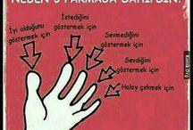 5 parmak
