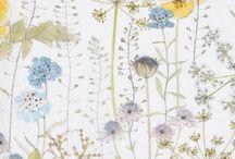 Illustration / Print fabric
