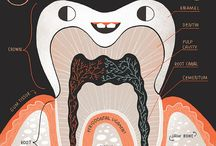 tooth poster