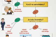 čeština gramatika
