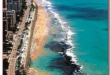 Tropical Beach sides / by Michelle Bolin