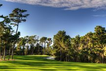 Poppy Hills Golf Course / The peaceful and serene backdrop sets the scene for a tranquil trip through the grand Del Monte Forest in Pebble Beach.  Poppy Hills became the first course to be owned and operated by a golf association in the United States when it opened June 1, 1986. The Robert Trent Jones Jr. design has since co-hosted the PGA Tour's AT&T Pebble Beach National Pro-Am from 1991 through 2009, as well as the Spalding Pebble Beach Invitational (1989, 1990, 1992, 1993) and 1991 NCAA Men's Championships.