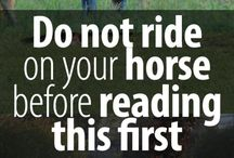 What i want to learn my horse