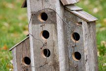 Bird Houses / Casas de pássaros