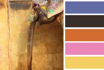 Color Palatte / Color combinations that can be used in designs