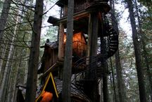 Treehouses / by The Redwood Fortuna Riverwalk Hotel
