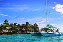 Painterly Photos of Caye Caulker / Photos that I have taken in 15 years of living in on Caye Caulker, Belize.