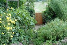 Odla, trädgårdstips
