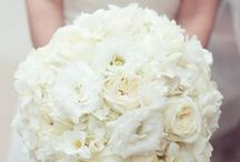Wedding Flowers / by Taylor Hobbs