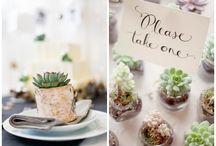 Wedding - Favour / Gastegeschenke