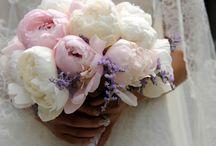 Flowers&Bouquets