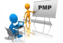 PMP / by Theodora Moody