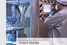 Przykłady sukcesów / Zobacz efekty naszej współpracy z największymi firmami w Polsce.
