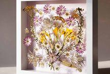 kurutulmuş çiçek tabloları