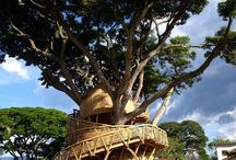 Cabañas alrededor del  mundo - Cabanes arreu del mon / Tree huts, bungalows around the world.